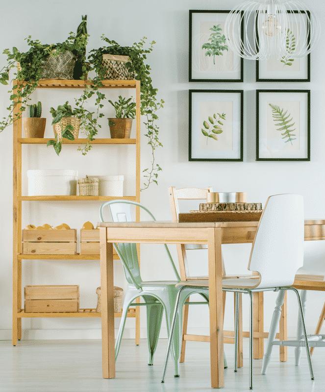 Plant Symbolism Guide – DesignMind
